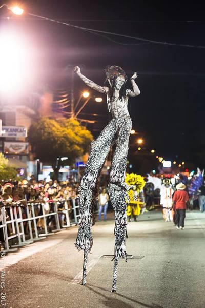 Photos Carnival 2017 Trinidad Amp Tobago Association Of